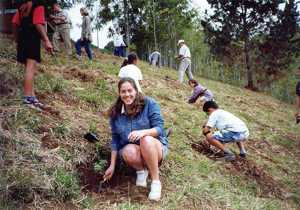 Planting endemic gumwood trees around the Centre, in support of St Helena's Environmental Awareness Year in 1999